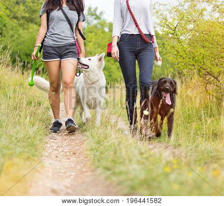 Young women with their dogs walking outdoor during summer day.