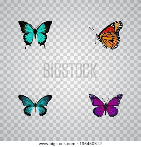 Realistic Copper, Purple Monarch, Milkweed And Other Vector Elements