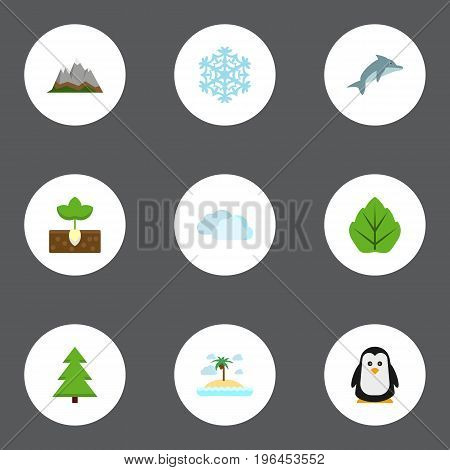 Flat Icons Tree, Foliage, Landscape Vector Elements. Set Of Nature Flat Icons Symbols Also Includes Peak, Spruce, Palm Objects.