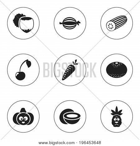 Set Of 9 Editable Cooking Icons. Includes Symbols Such As Root Vegetable, Cucumber, Juniper And More