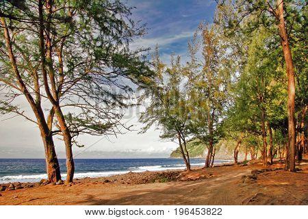 Sunny tropical beach. Big island. Hawaii
