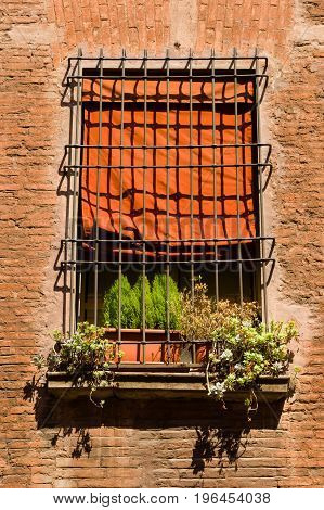 Bologna House Window With Red Textile Blinds And Flowerpot