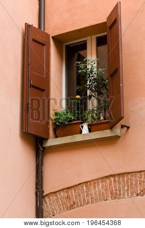Bologna House Window Decorated With Flowerpot And Wooden Shutters