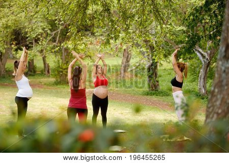 Pregnant women group of moms training with coach doing fitness exercises and yoga during pregnancy in park.