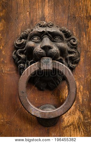 Antique Lion Shaped Metal Door Knocker On Old Wooden Door