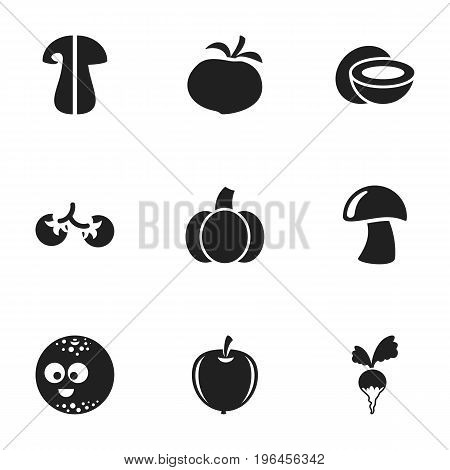 Set Of 9 Editable Vegetable Icons. Includes Symbols Such As Turnip, Cep, Gourd And More