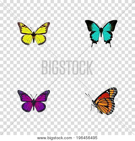Realistic Archippus, Purple Monarch, Copper And Other Vector Elements