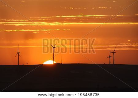 the sunset on the background of windmills