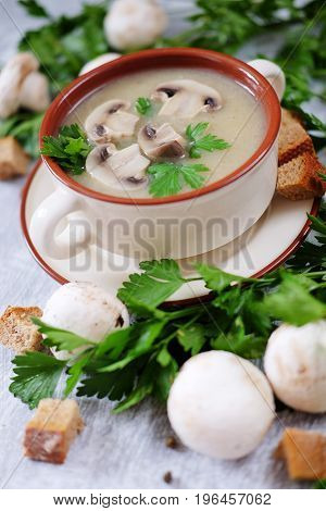 Fresh mashed mushroom soup decorated with green parsley bread croutons and pepper on grey background