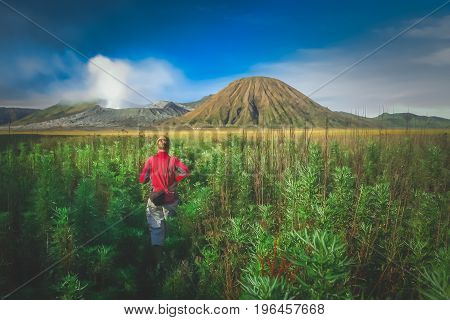 Female tourist walking through the high grass towards the craters of Gunung Bromo and Sumeru volcanoes in Java, Indonesia