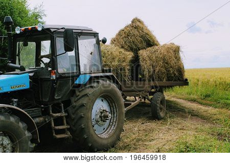 Tractor driven fresh hay on special agricultural trailer in the background of the picturesque landscape.