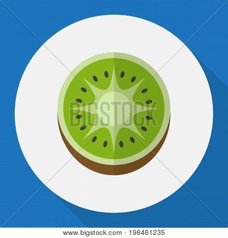 Vector Illustration Of Fruits Symbol On Kiwi Flat Icon