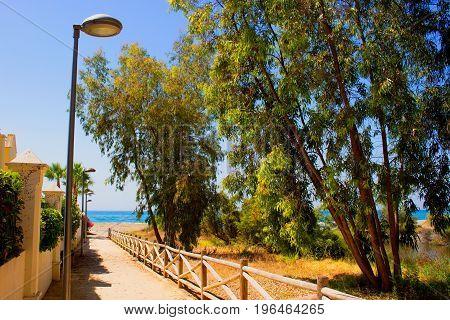 Street. Spanish city. San Pedro de Alcantara city, Marbella, Andalusia, Spain.