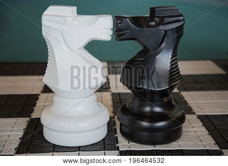 Concept gay love horses figures kiss chess board