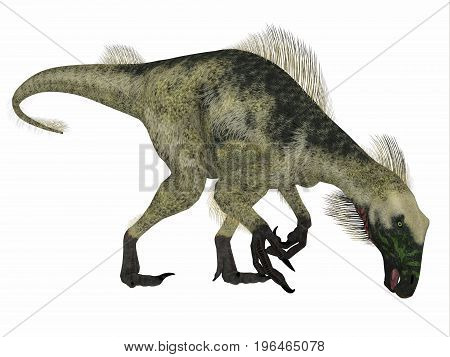 Beipiaosaurus Dinosaur Side Profile 3d illustration - Beipiaosaurus was a herbivorous theropod dinosaur that lived in China in the Cretaceous Period.