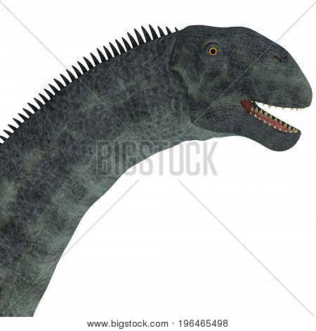 Cetiosaurus Dinosaur Head 3d illustration - Cetiosaurus was a herbivorous sauropod dinosaur that lived in Morocco Africa in the Jurassic Period. poster