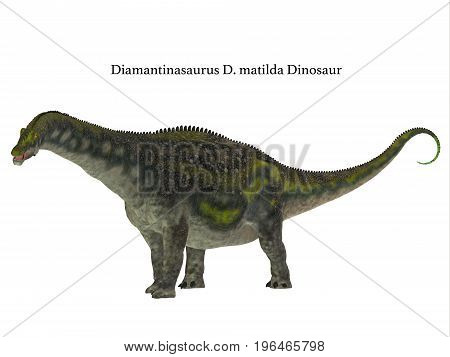 Diamantinasaurus Dinosaur Side Profile with Font 3d illustration - Diamantinasaurus was a herbivorous sauropod dinosaur that lived in Australia during the Cretaceous Period.