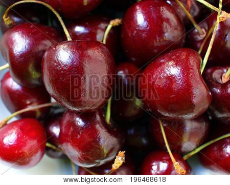 Fresh cherries close up, harvest of summer