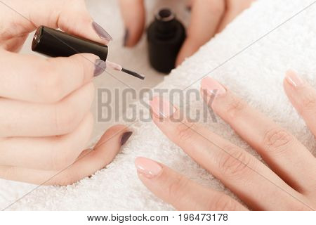 Closeup of beautician painting nails of female client. Woman in beauty spa salon doing manicure