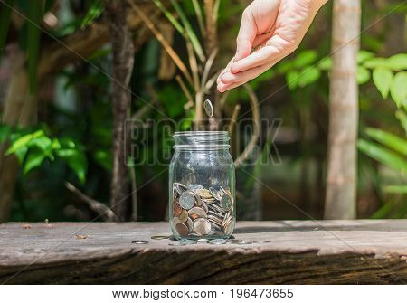 Money in the glass and hand putting coin in glass .Saving money concept