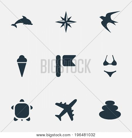 Elements Balance, Airplane, Mammal Fish And Other Synonyms Rose, Flag And Travel. Vector Illustration Set Of Simple Seaside Icons.