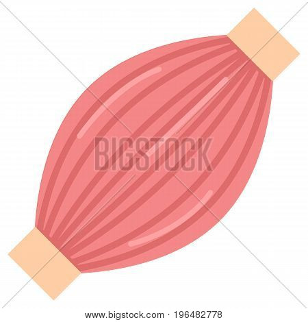 Human muscle icon, vector illustration flat style design isolated on white. Colorful graphics