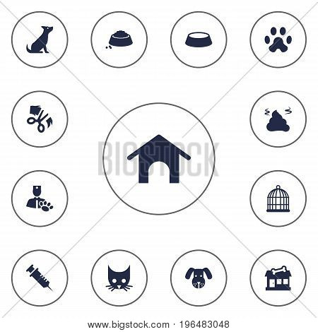 Collection Of Injection, Dish, Dog And Other Elements. Set Of 13 Pets Icons Set.