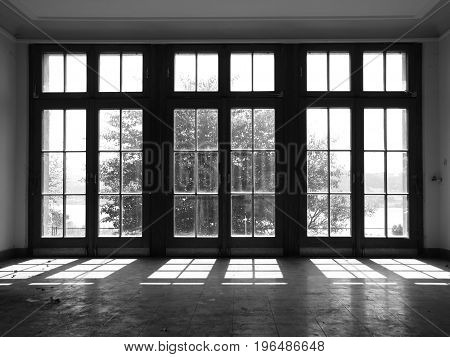 Window with Light Reflection on Tile Floor and Tree in Backlight