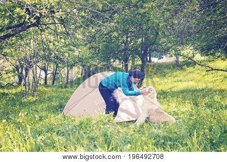 Joyful Woman Traveler Plays With Big Dog Next To Tent