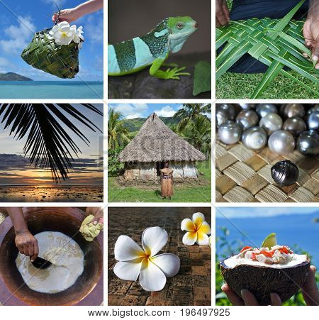 Fijian collage montage. Iconic Travel Fiji photos or postcard background.