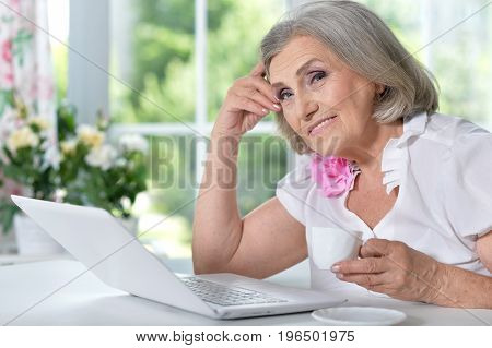 Portrait of a mature woman sitting with modern laptop