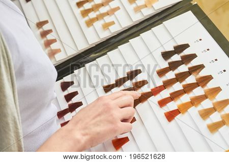 Hair color swatches chart, hand. Dyed hair samples.