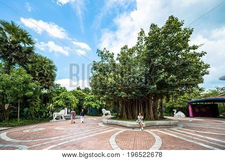 SINGAPORE - MARCH 22 2017: People enjoying a sunny day at Gardens by the Bay in Singapore.