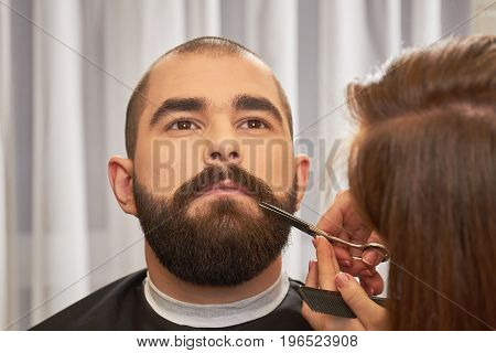 Barber with scissors trimming beard. Face of a bearded man.