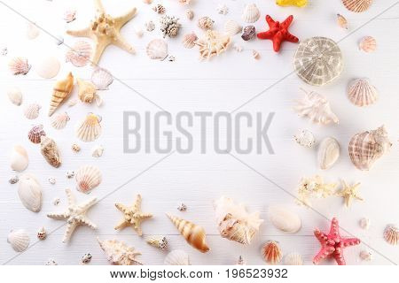 Seashells frame on the white wooden table