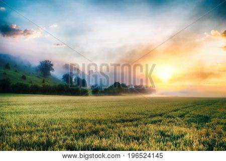 Colorful surreal sunrise at the misty foggy meadow.