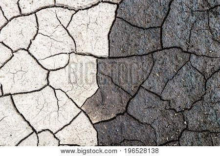 Nature background, border of dry and wet cracked mud. Concept of opposites, dark and light.