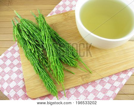 Tea from fresh equisetum arvense in a cup