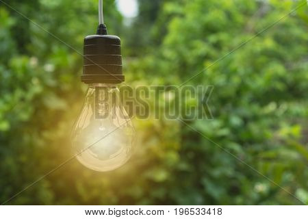 Hanging light bulbs with glowing one. Idea and creativity concept with light bulbs.