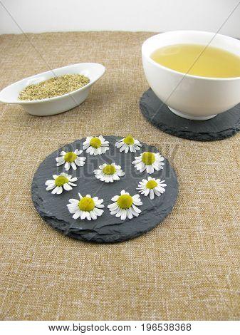 Fresh white camomile flowers and camomile tea