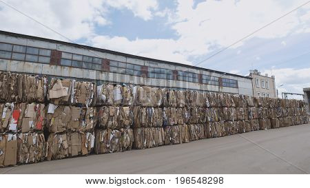 Compressed cardboard on the territory plant of the recycling in bales, perspective view - wide angle