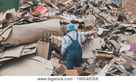 Recycling of cardboard at industrial landfill, ecology concept, wide angle