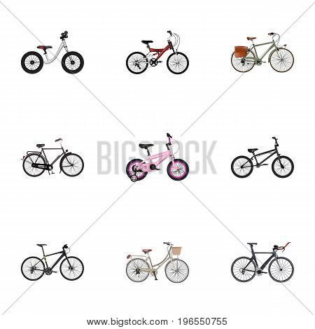 Realistic Equilibrium, Extreme Biking, Hybrid Velocipede And Other Vector Elements