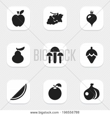 Set Of 9 Editable Fruits Icons. Includes Symbols Such As Onion, Sugar Basin, Turnip And More