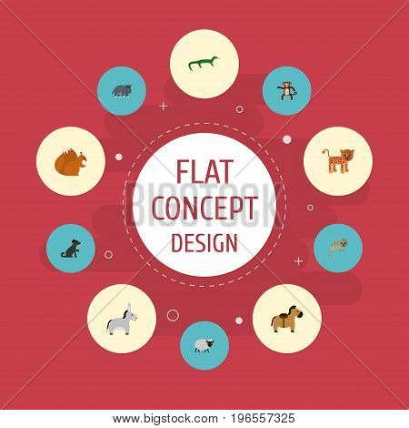 Flat Icons Reptile, Jackass, Mutton And Other Vector Elements