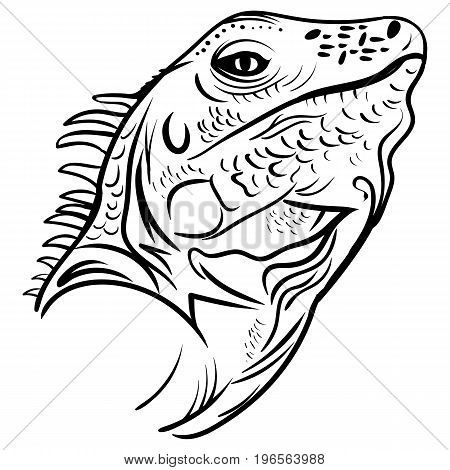 head iguana profile sketch vector graphics black and white drawing iguana tattoo sketch