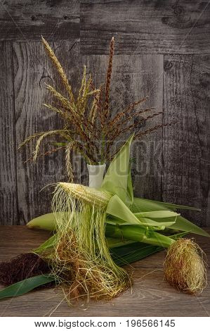 Pale green corn cobs with corn silk, lying on dark grey wooden table. Apical panicle with flowers, corn silk, and cobs of dairy ripeness. Studio photography.