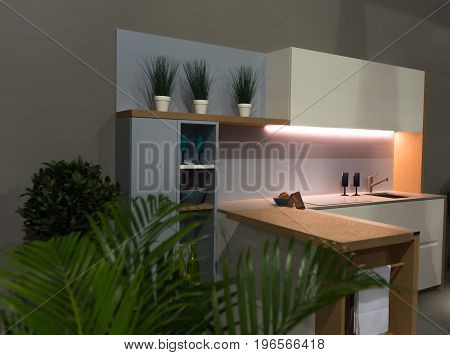 Greens in the kitchen in the interior with minimal lighting
