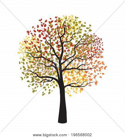 Vector illustration of autumn tree with falling leaves on a white background