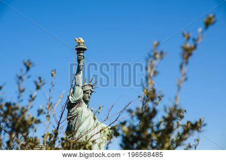 Statue of liberty against the sky. Tree branches in the foreground.